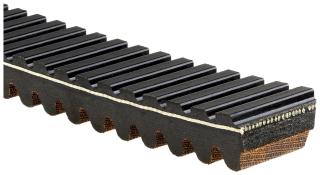 Gates - 49G4266 - Recreational G-Force Belt