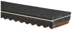 Gates - 39G4640 - Recreational G-Force Belt